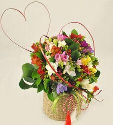 Freesias in a basket