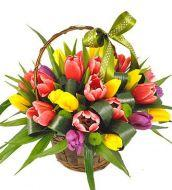 Multi colored tulips in a basket